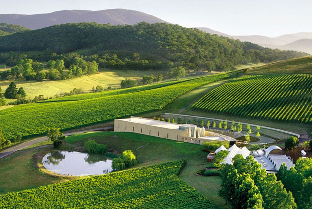 Yarra Valley Winery Bus Tours